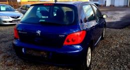 Zdjęcie Peugeot 307 1.6 i XR